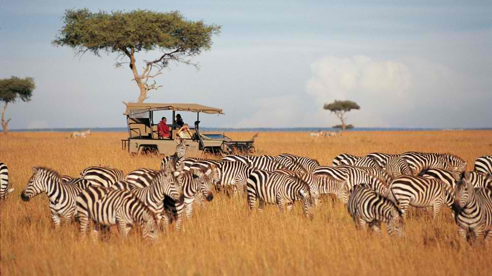 to 5 best african safaris